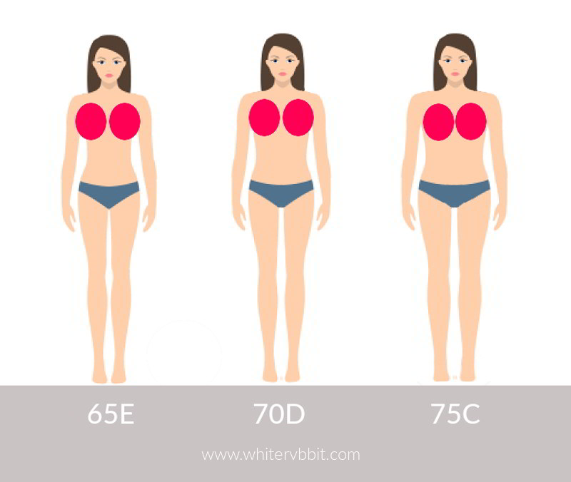 Porównanie rozmiarów biustonoszy